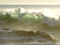 Green Wave in Ft. Bragg to Rockport photo gallery