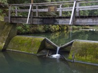 South Fork Weir in JDSF/Mendo Woodlands photo gallery