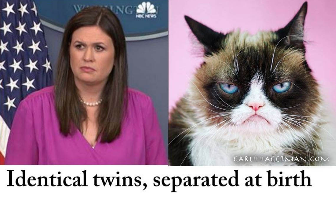 Sarah Huckabee Sanders and Grumpy Cat as identical twins meme