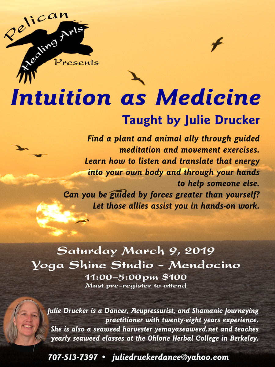 Intuition as Medicine Flyer on Garth Hagerman Photo/Graphics