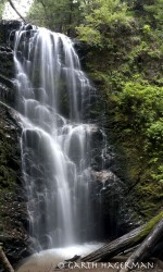 Berry Creek Falls in San Francisco Bay Area photo gallery