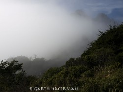 Fog and Ridges in Lost Coast photo gallery