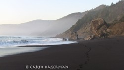 Footsteps to the Wild in Lost Coast photo gallery