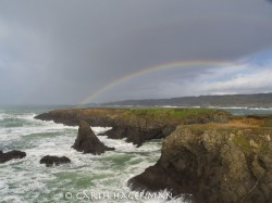 Hint of a Double in Mendocino photo gallery
