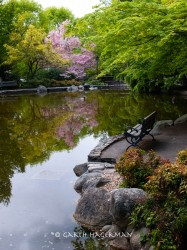 Lithia Park in Oregon photo gallery