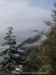 North to Crescent City in Redwood National and State Parks photo gallery