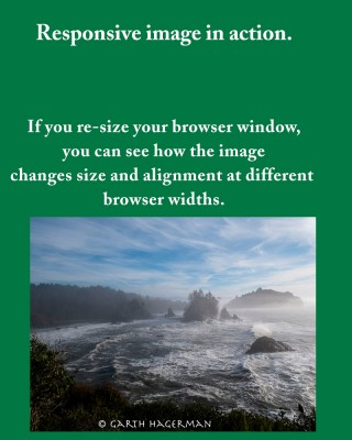 This image changes size and alignment in response to different browser widths.