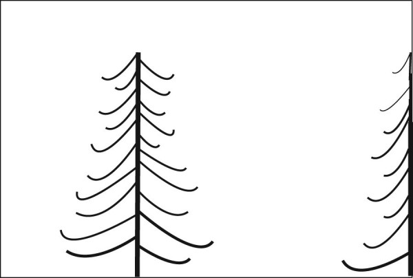A second tree used as a framing element.