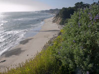 Bowling Ball Beach from the Bluffs above in Southern Mendocino Coast photo gallery