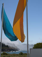 Music Festival Flags in events photo gallery