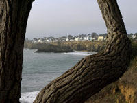 Mendocino Framed in buildings photo gallery